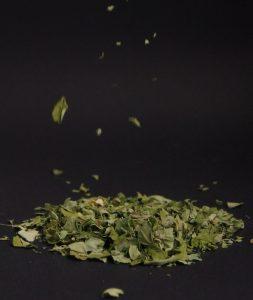 Beneficios de las hojas de Moringa para tu salud